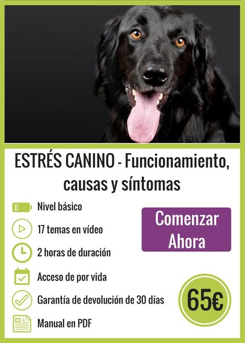 Curso Online Estrés Canino Funcionamiento causas y síntomas