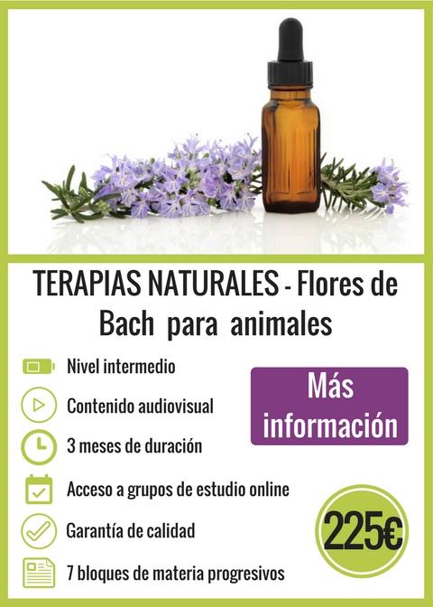 Terapias Naturales - Flores de Bach para animales